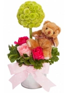 TA06 Rose Green Button Teddy White Vase
