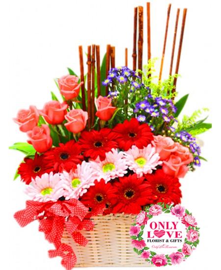 Flower Basket KL
