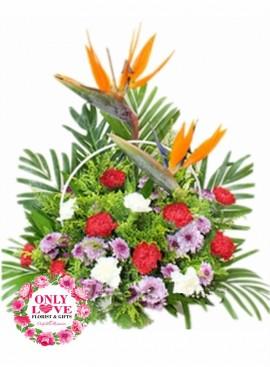 MD010 Carnation Basket