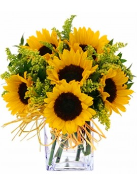 V11 Sunflowers in Vase