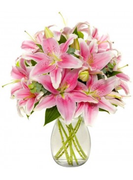 V07 Pink Stargazer Lily in Vase