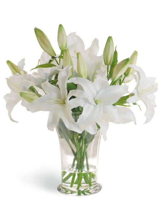 White Casablanca Lily in Vase