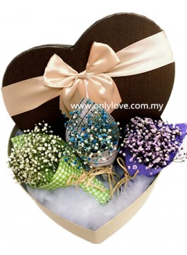 Mini Baby Breath Gift Box