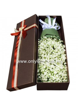 LB20 Baby Breath Gift Box