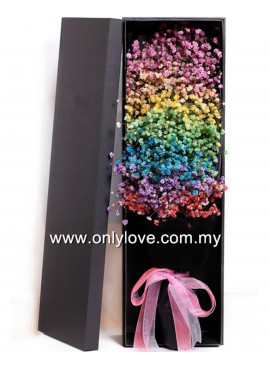LB22 Rainbow Baby Breath Gift Box