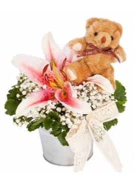 Lilies Teddy White Vase