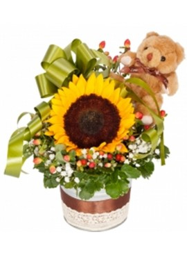 Sunflower Teddy White Vase