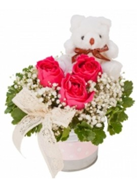 Rose Teddy White Vase