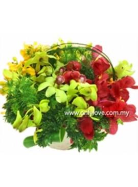Mokara Orchid in Vase