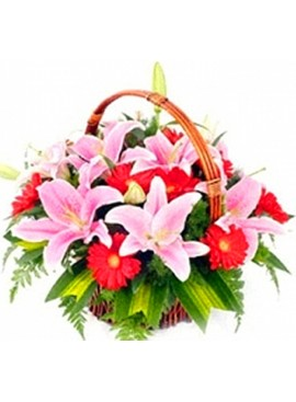 B14 Flower Basket