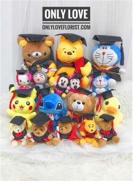 AD023 Graduation Plush Toy