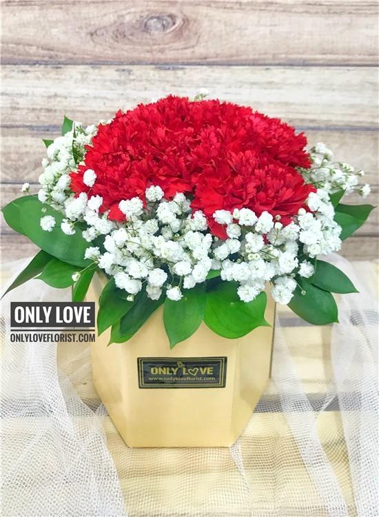 MD035 Carnation in Vase