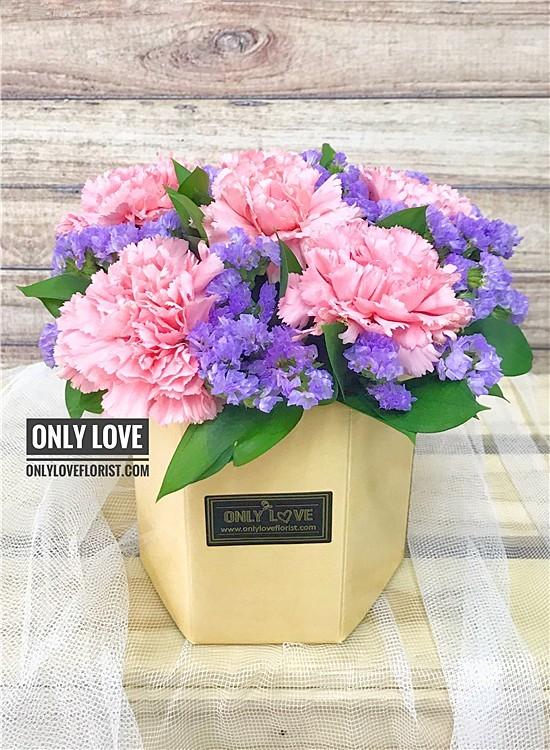 MD053 Carnation in Vase