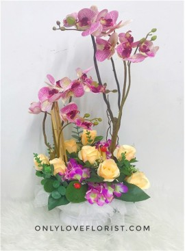AB12 Artificial Orchid Flowers