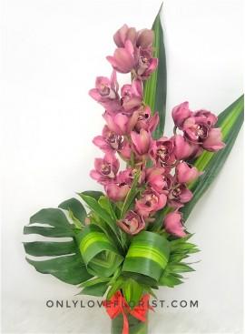 Red Cymbidium Orchid in Vase
