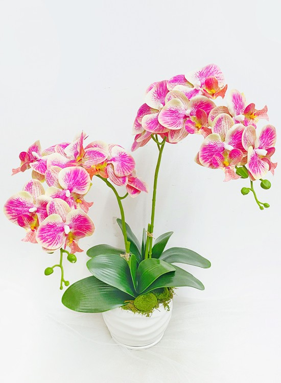 AB14 Artificial Orchid Flowers