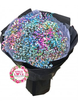 BA15 Rainbow Baby Breath Bouquet